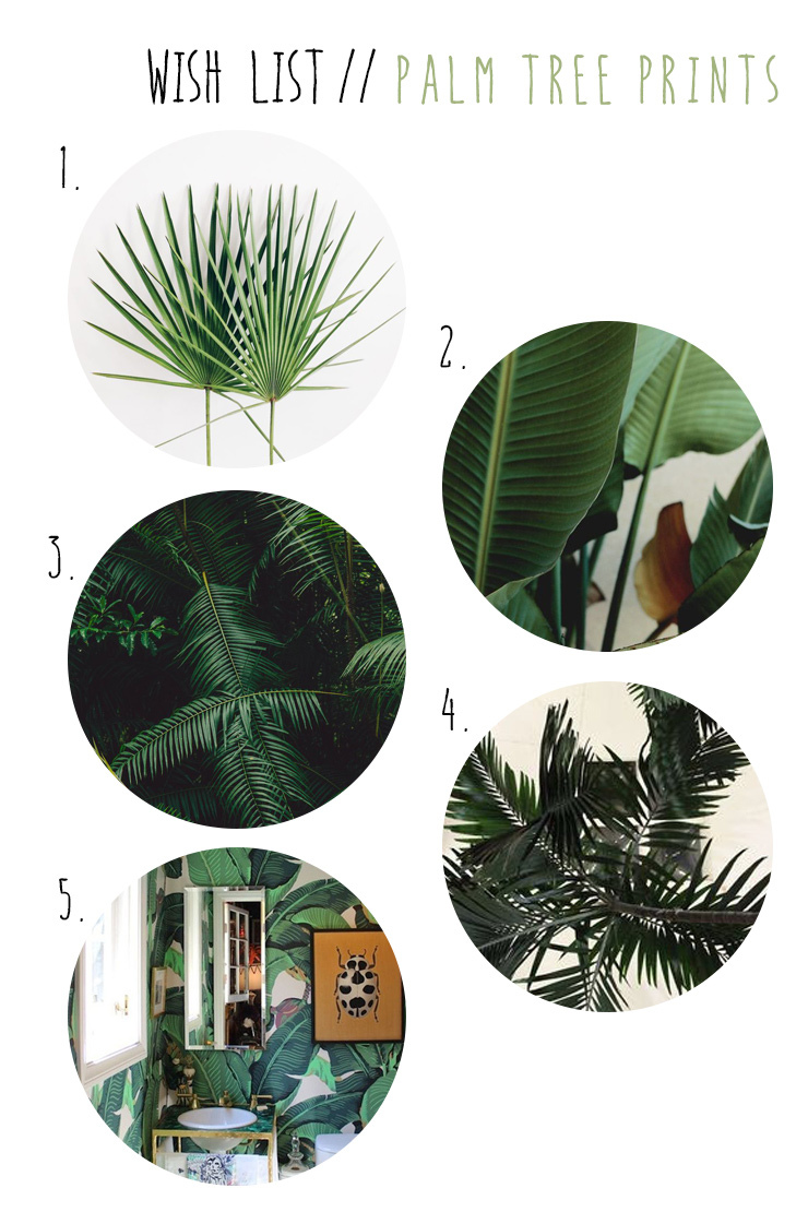wish list wednesday // palm tree prints