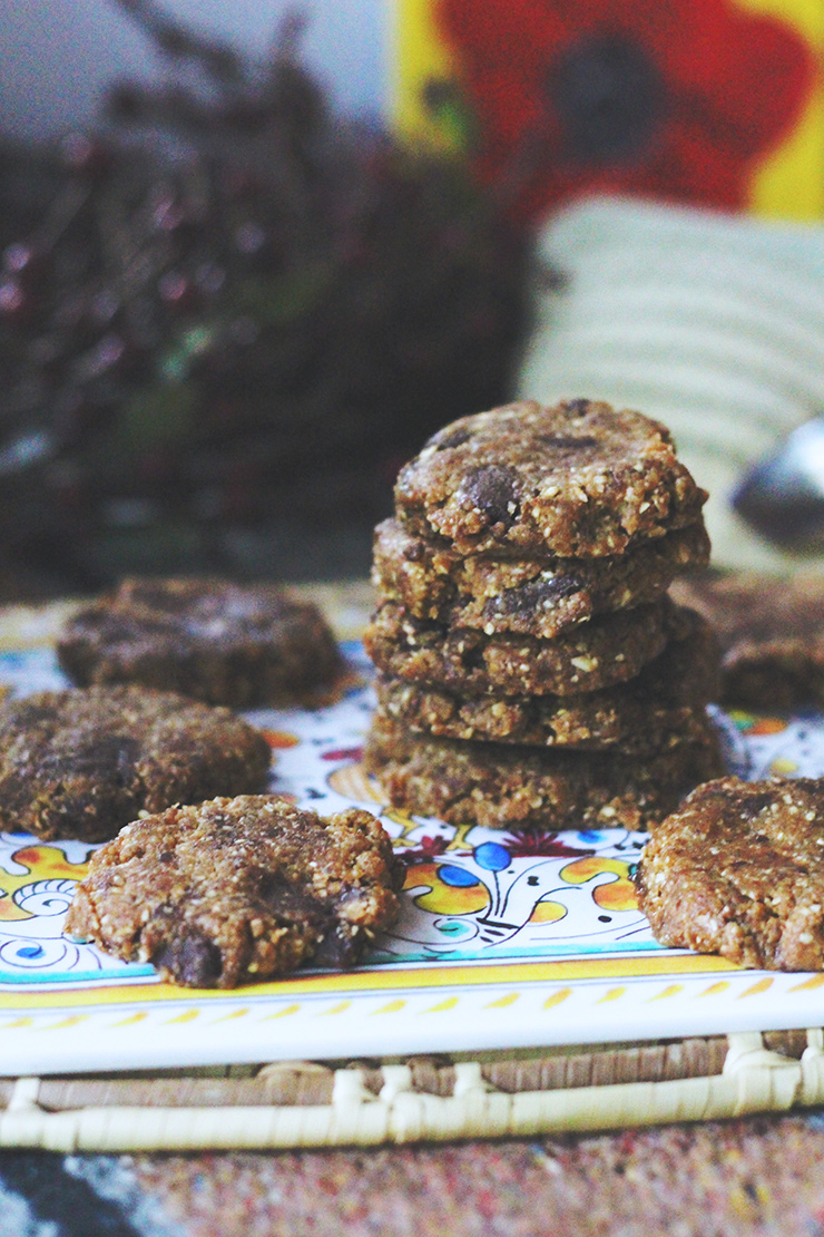 RAW VEGAN PEANUT BUTTER CHOCOLATE CHIP COOKIES