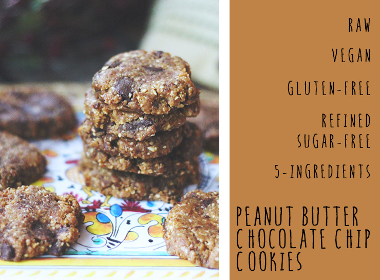 raw-chocolate-chip-peanut-butter-cookies-graphic