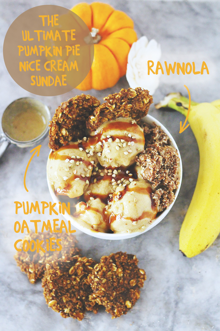 raw vegan pumpkin pie nice cream sundae // topped with pumpkin oatmeal cookies, rawnola, coconut nectar & buckwheat sprinkles
