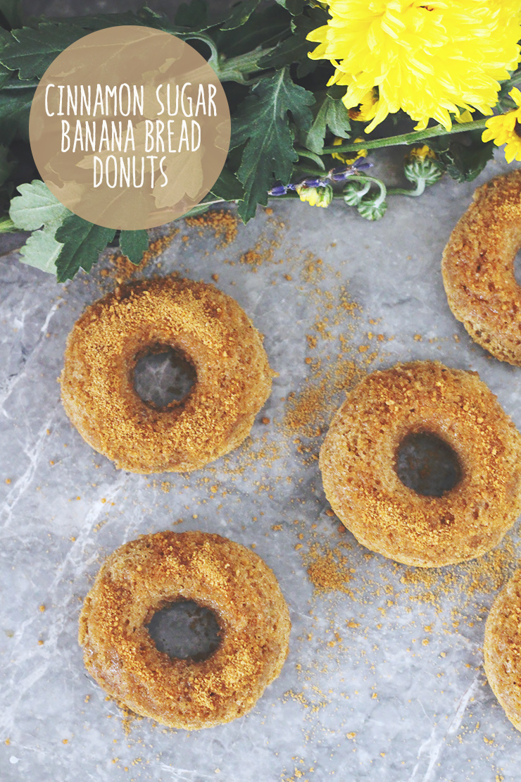 cinnamon-sugar-banana-bread-donuts-final-graphic